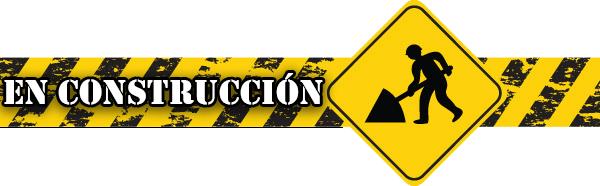 dixconstruccion2